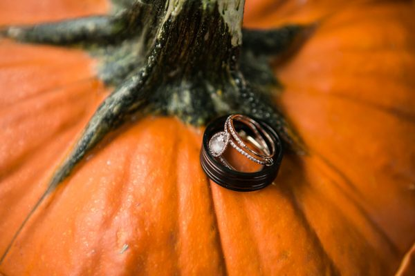 WEDDING RINGS ON A PUMPKIN DETAILED SHOT